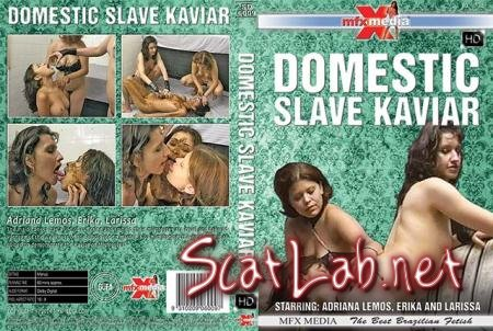 [SD-6009] Domestic Slave Kaviar (Adriana Lemos, Erika, Larissa) Lesbian, Domination [HDRip] MFX Media