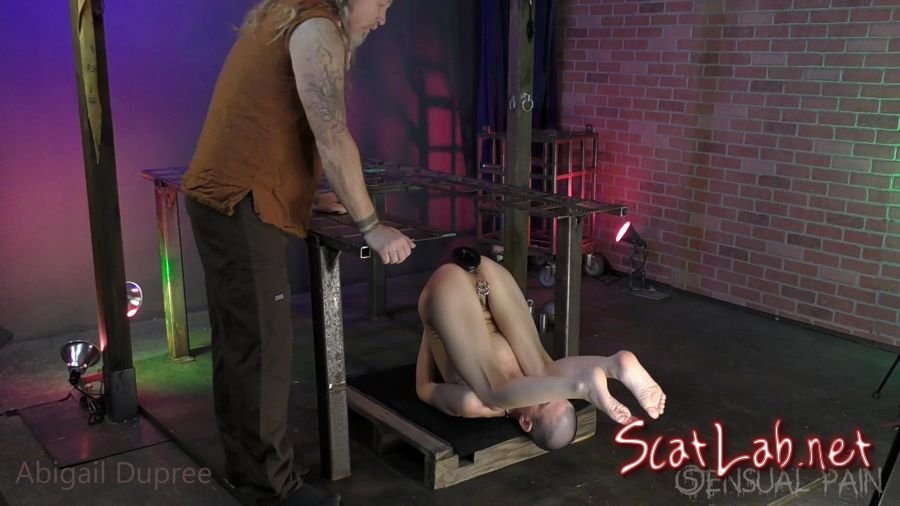 Master Poops into my Ass (Abigail Dupree) Solo Scat, Defecation [FullHD 1080p] ScatShop