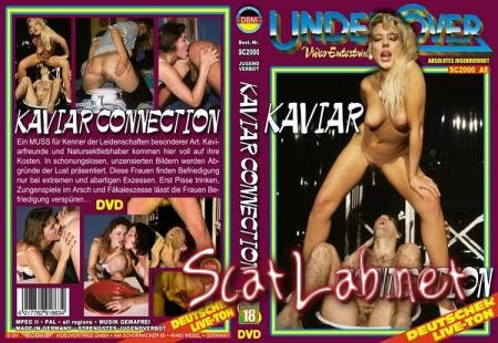 Kaviar Connection (ShitGirl) All Sex, Germany [DVDRip] DBM Videovertrieb