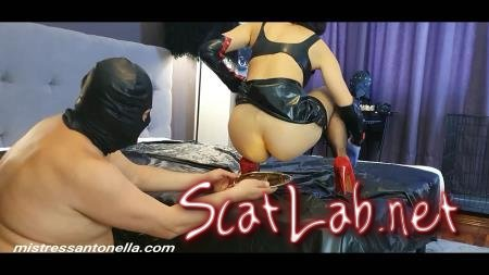 Birthday of the Supreme Goddess (MistressAntonellaSilicone) Femdom, Shit [FullHD 1080p] Toilet Slavery